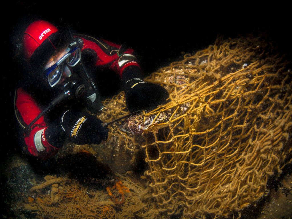 Ghost nets are lost fishing gear that continue fishing on the sea floor, catching fish as well as other species.
