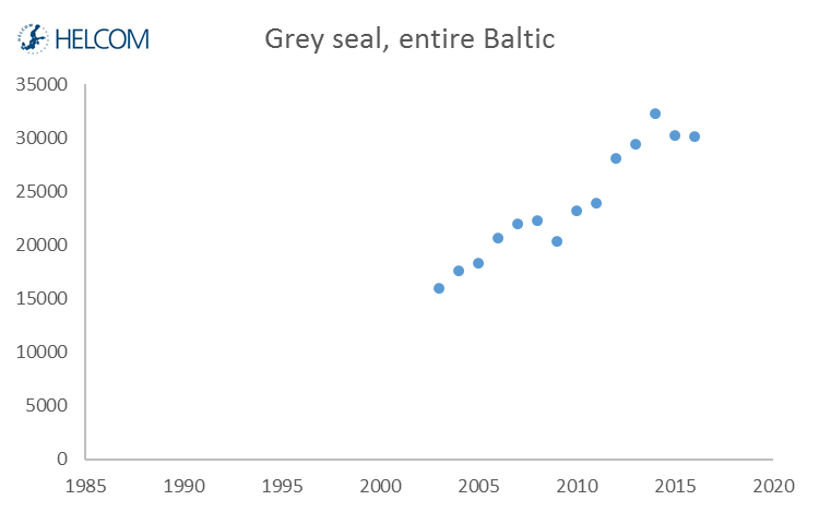Figure 5.4.3. Developments over time in the counted number of grey seals hauling out in moulting time during 2003–2015.