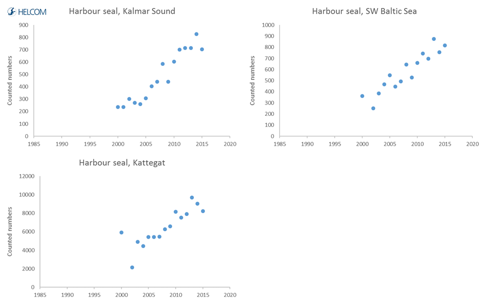 Figure 5.4.5. Developments over time in the counted number of harbour seals hauling out in moulting time.