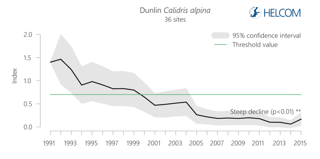 Figure 5.5.2. Temporal development in abundance index values of the wading feeder dunlin from 1991-2015.