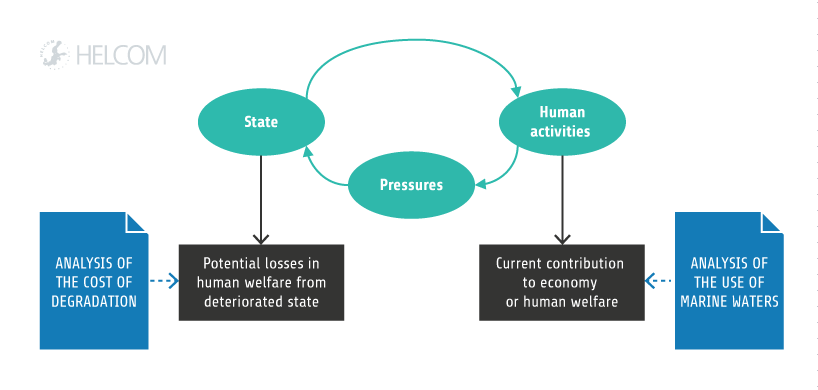 Figure 3.3. Roles Of Economic And Social Analyses In The Holistic Assessment. The Human Activities Contribute To The National And Regional Economies And Human Welfare, Which Is Measured By The Economic And Social Analysis Of The Use Of Marine Waters (Box 3.1 In Economic Benefits From The Protection And Use Of The Baltic Sea). The State Of The Marine Environment Affects Human Welfare. The Welfare Losses From Not Being In A Good Environmental Status Are Estimated In The Cost Of Degradation Analysis (Box 3.2 In Economic Benefits From The Protection And Use Of The Baltic Sea). The Status Also Affects The Economic Contribution From Many Activities, Such As Recreation And Fish And Shellfish Harvesting, As Shown By The Link Back From 'state' To 'activity'.