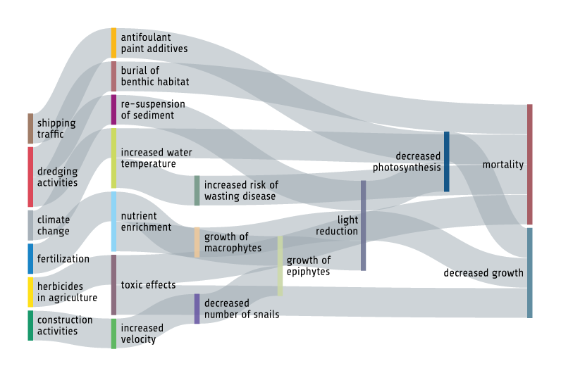 Figure B.6.1.1. Effects of selected human activities on seagrass meadows.