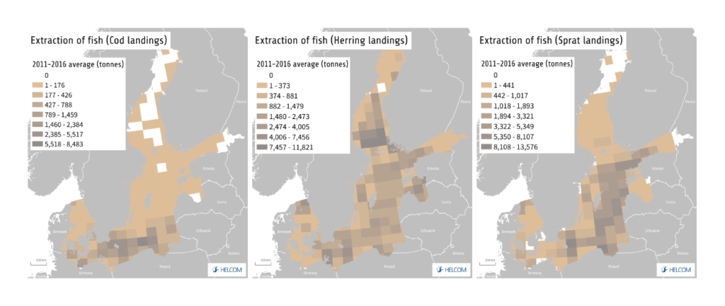 Figure 3.6. Spatial distribution of commercial landings of cod, herring and sprat in the Baltic Sea.