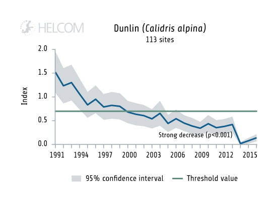Figure 5.5.3. Temporal development of the abundance of the wading feeder dunlin.